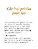Tài liệu Các loại prôtêin phức tạp pdf
