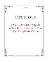 Tài liệu Tiểu luận: Tín dụng trong nền kinh tế thị trường định hướng xã hội chủ nghĩa ở Việt Nam pptx