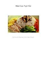 Tài liệu Bún Gạo Ngũ Sắc pptx