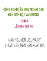 Tài liệu CÔNG NGHỆ LÊN MEN TRONG CHẾ BIẾN TINH BỘT VÀ ĐƯỜNG pptx