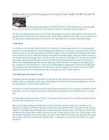Tài liệu Kế toán quản trị chi phí và ứng dụng của nó trong các doanh nghiệp chế biến thủy sản VN docx