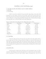 Tài liệu Giáo trình cây ăn trái - chương 4 docx