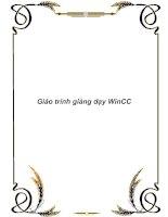 Tài liệu Giáo trình giảng dạy WinCC doc