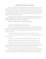 Tài liệu Giới thiệu về kiểm soát nội bộ ! ppt