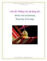 Tài liệu Chủ đề: Những con vật đáng yêu - Đề tài: Chú vịt dễ thương - Nhóm lớp: 25-36 tháng docx