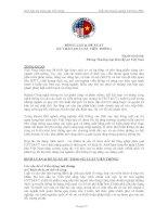 Tài liệu Bình luận Dự thảo Luật Viễn thông Diễn đàn Doanh nghiệp Việt Nam 2009 docx
