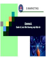 Tài liệu Bài giảng thương mại điện tử: Quản trị xúc tiến thương mại điện tử doc