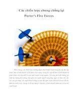 Tài liệu Các chiến lược chung chống lại Porter''''s Five Forces ppt