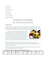 Tài liệu Bài báo cáo thí nghiệm _THUC HANH RAU QUA pptx