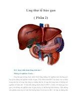 Tài liệu Ung thư tế bào gan ( Phần 2) pptx