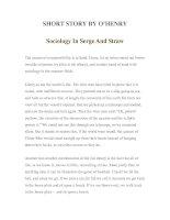 Tài liệu LUYỆN ĐỌC TIẾNG ANH QUA TÁC PHẨM VĂN HỌC-SHORT STORY BY O'HENRY -Sociology In Serge And Straw doc
