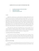 Tài liệu Nghiên cứu và lựa chọn thị trường mục tiêu trong marketinh chiến lược pdf