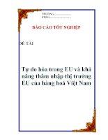 """Tài liệu Luận văn: """"Tự do hóa trong EU và khả năng thâm nhập thị trường EU của hàng hoá Việt Nam"""