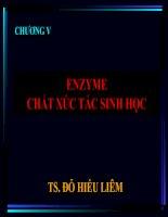 Tài liệu Chương V: Enzyme- Chất xúc tác sinh hoc ppt