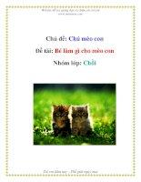 Tài liệu Chủ đề: Chú mèo con - Đề tài: Bé làm gì cho mèo con - Nhóm lớp: Chồi docx