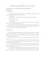 Tài liệu Giáo trình cây ăn trái - chương 3 pdf