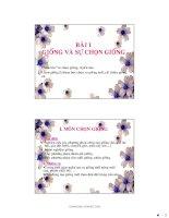 Tài liệu Slide : Kĩ thuật chọn giống cây trồng pdf