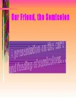 Tài liệu Our Friend, the Semicolon pptx