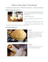 Tài liệu Bánh mì Đan Mạch