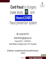 Tài liệu The Modernization of the Hungarian Banking System (1989-2000). Banking Card Market & its Fraud Characteristics. MONEYGUARD – the World Leading Banking Card Protection Messaging Solution. docx