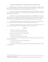 Tài liệu BẢN GIỚI THIỆU VỀ NHƯỢNG QUYỀN THƯƠNG MẠI ppt