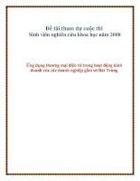 Đề tài Ứng dụng thương mại điện tử trong hoạt động kinh doanh của các doanh nghiệp gốm sứ Bát Tràng