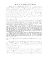 Tài liệu BỆNH ĐÁI THÁO ĐƯỜNG Ở TRẺ EM pdf