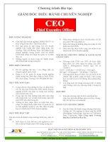 Tài liệu ĐÀO TẠO GIÁM ĐỐC ĐIỀU HÀNH CHUYÊN NGHIỆP pdf