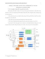 Quá trình khử lưu huỳnh trong các phân đoạn dầu mỏ