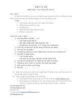 Tài liệu Tiểu luận môn vật liệu kỹ thuật pdf