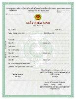 Tài liệu BTP-NGHT-2007-KS.1.a _ Giấy khai sinh (Bản sao) ppt