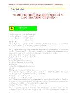 25 DE THI DAI HOC THU MON LY CUA CAC TRUONG CHUYEN ( DAP AN CHI TIET)