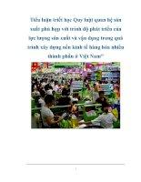 Tài liệu Tiểu luận triết học Quy luật quan hệ sản xuất phù hợp với trình độ phát triển của lực lượng sản xuất và vận dụng trong quá trình xây dựng nền kinh tế hàng hóa nhiều thành phần ở Việt Nam