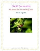 Tài liệu Chủ đề: Con côn trùng - Đề tài: Bé biết con côn trùng nào? - Nhóm lớp: Lá pdf