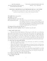 Tài liệu CHƯƠNG TRÌNH ĐÀO TẠO TRÌNH ĐỘ TRUNG CẤP NGHỀ CỦA TRƯỜNG CAO ĐẲNG CÔNG THƯƠNG THÀNH PHỐ HỒ CHÍ MINH ppt