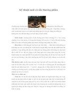 Tài liệu Kỹ thuật nuôi cá sấu thương phẩm docx