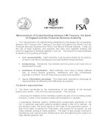 Memorandum of Understanding between HM Treasury, the Bank of England and the Financial Services Authority pptx