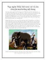 Ngụ ngôn Thầy bói xem voi và câu chuyện marketing nội dung docx