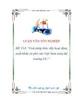 luận văn:Giải pháp thúc đẩy hoạt động xuất khẩu cà phê của Việt Nam sang thị trường EU potx