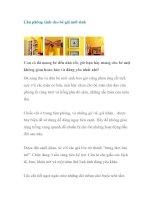 Căn phòng xinh cho bé gái mới sinh pdf