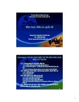 bài giảng đầu tư quốc tế chương 4 - gv.nguyễn thị việt hoa