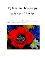 Tự làm bình hoa poppy giấy rực rỡ ấm áp pot
