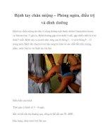 Bệnh tay chân miệng – Phòng ngừa, điều trị và dinh dưỡng pdf
