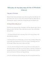 Khắc phục các ứng dụng mạng căn bản với Wireshark (Ethereal) pdf
