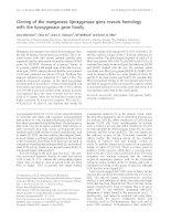 Báo cáo Y học: Cloning of the manganese lipoxygenase gene reveals homology with the lipoxygenase gene family doc