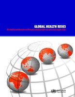 GLOBAL HEALTH RISKS: Mortality and burden of disease attributable to selected major risks doc