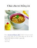 Cháo kích thích cho trẻ biếng ăn pdf