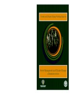 Forest Management and Climate Change: a literature review pdf