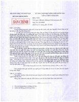 Đề thi học sinh giỏi quốc gia năm 2010 môn văn 12 docx