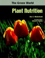 The Green World Plant Nutrition pptx